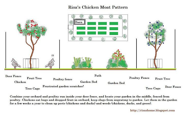 A Way To Live Risa S Chicken Moat Pattern Chickens Backyard Chicken Garden Raising Chickens