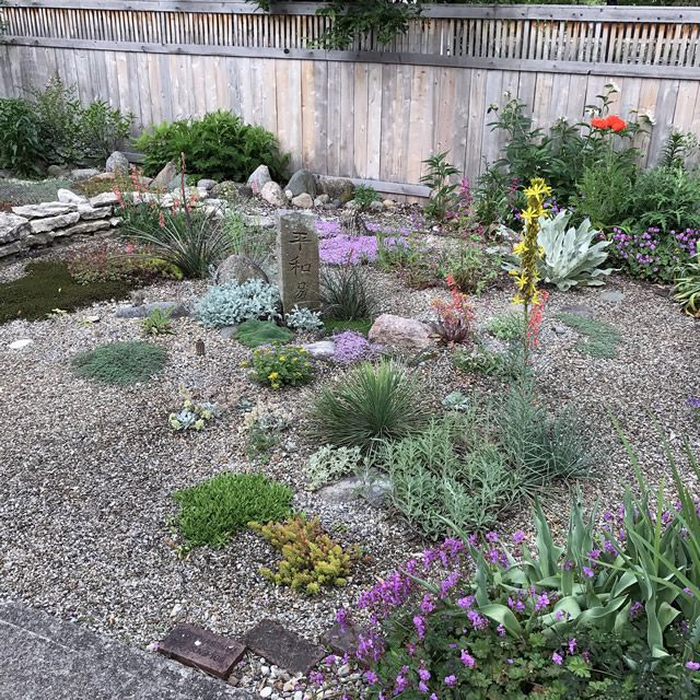 Gravel Garden In Columbus, Ohio Contains A Variety Of Succulents And Thyme.  GPOD  . Gravel GardenGarden LandscapingGardening MagazinesDrought ...