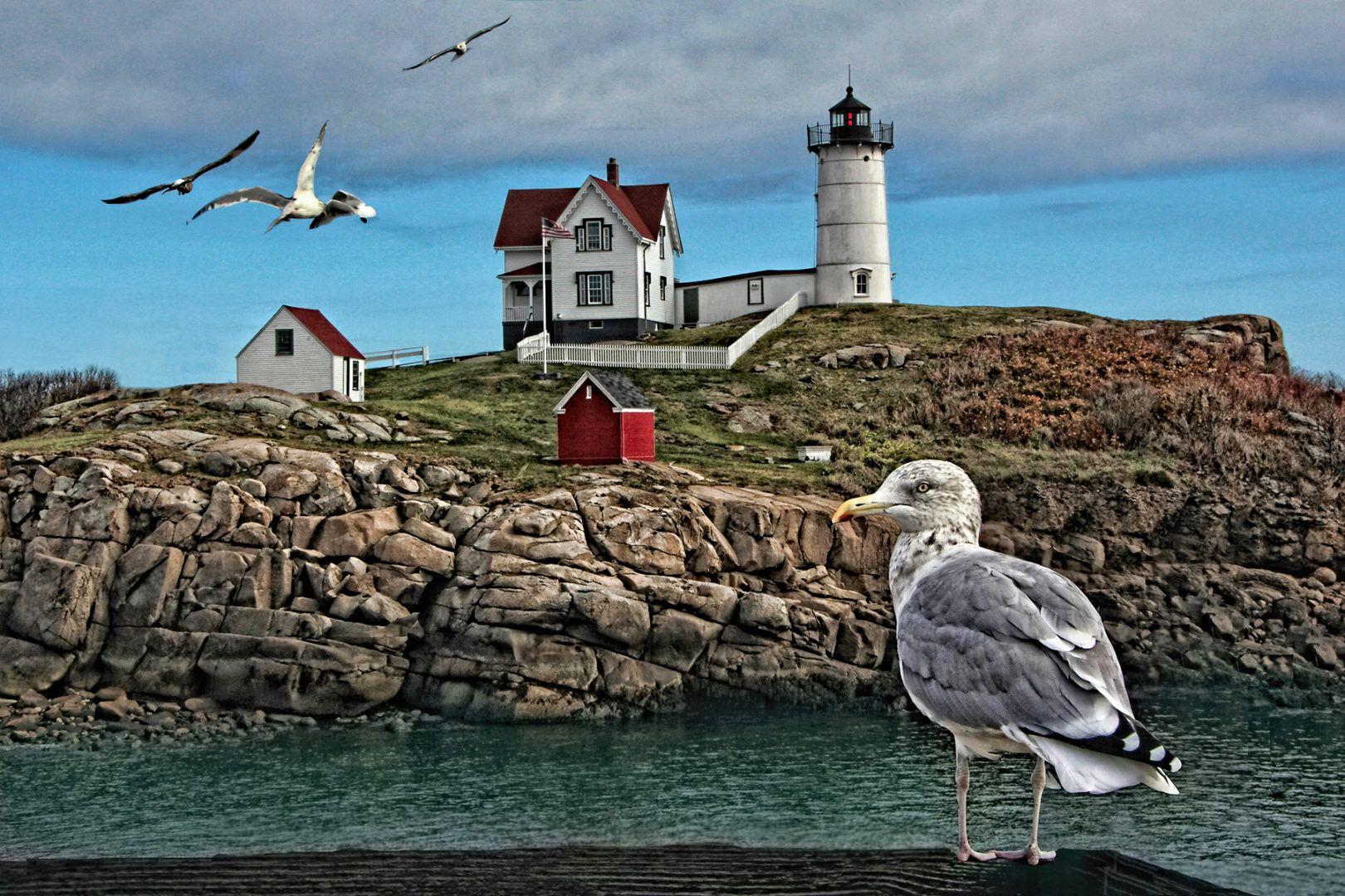Nubble Light and Seagulls