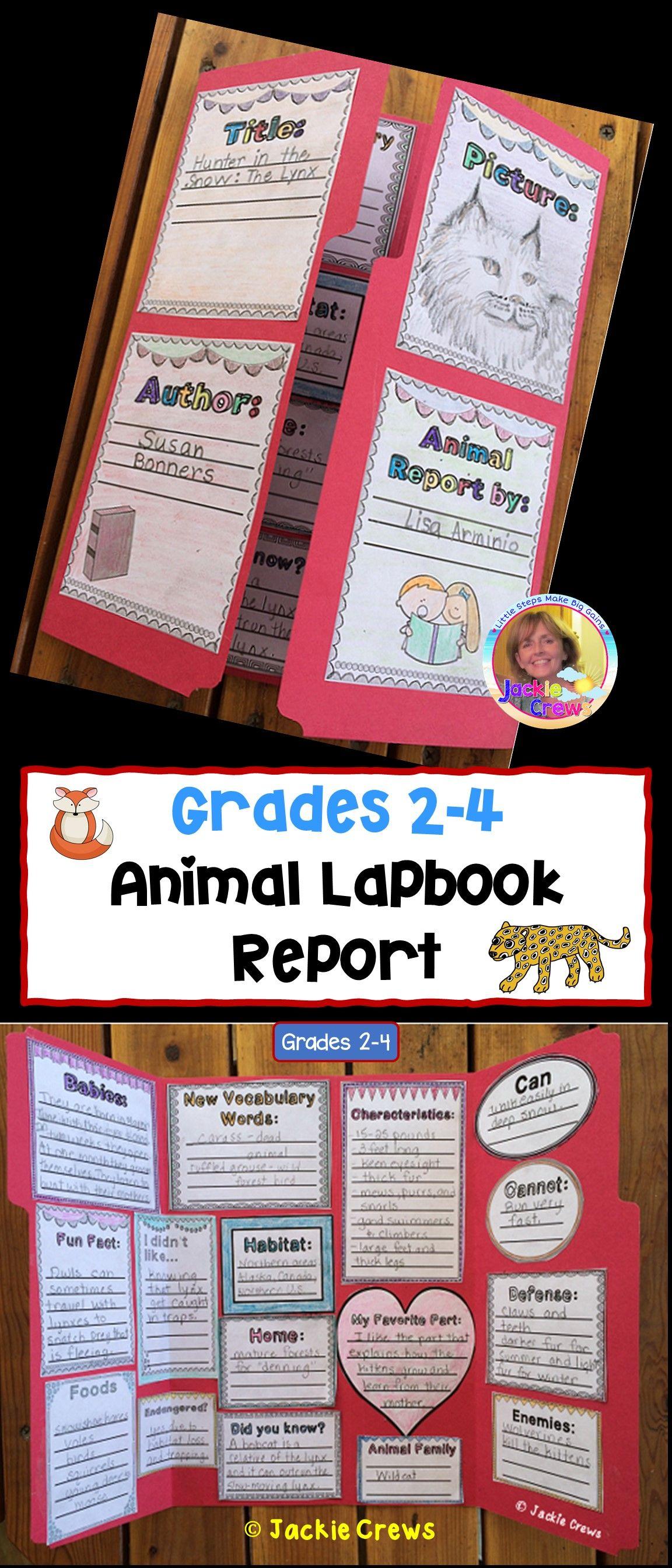 Animal Lapbook Report In
