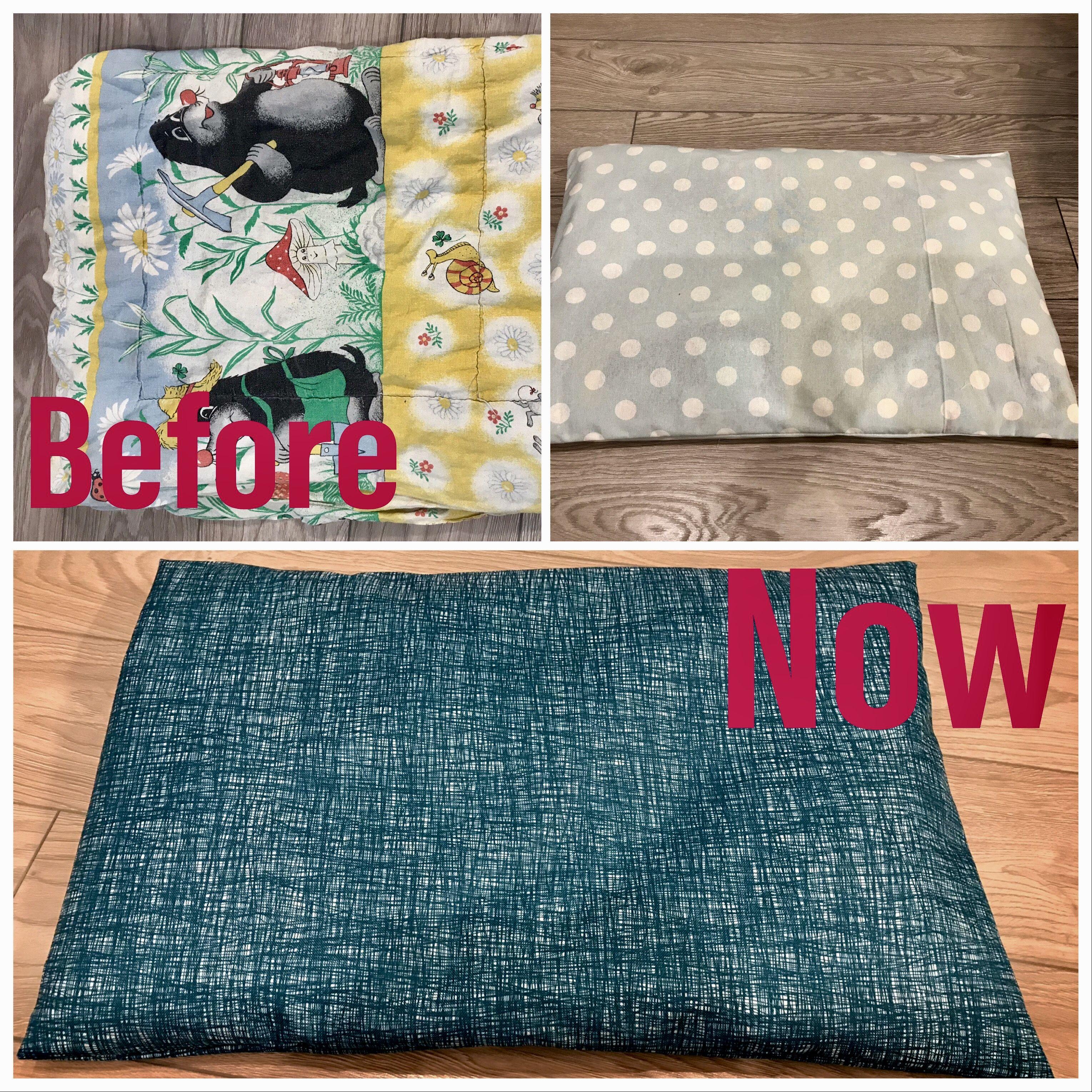 Renew dog pillow Dog pillow, Outdoor blanket, Picnic blanket
