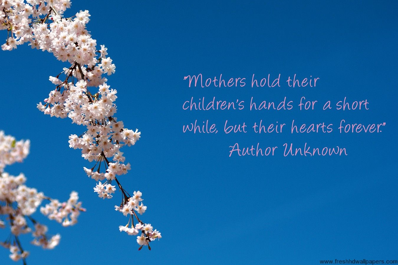 Mother's Day Quotes | Mother's
