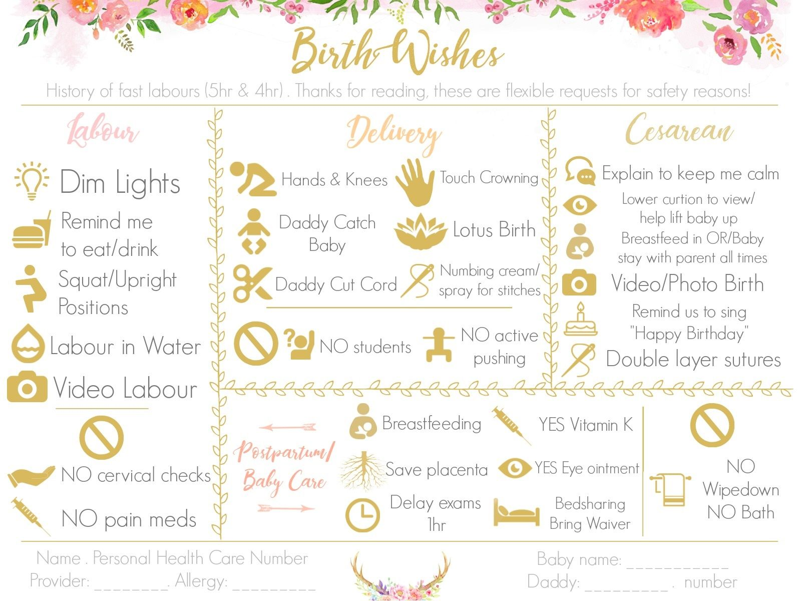 Make A Visual Birth Plan Easy To Read And Fun To Look At
