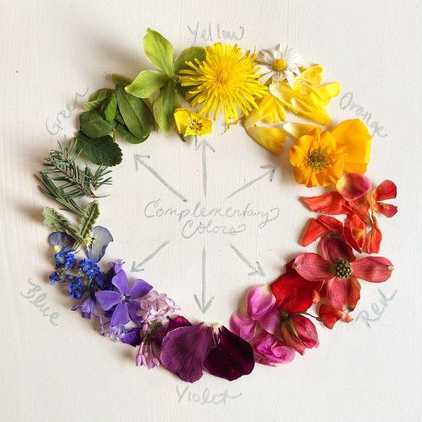The Color Wheel Flower Arrangement Pinterest Color Color