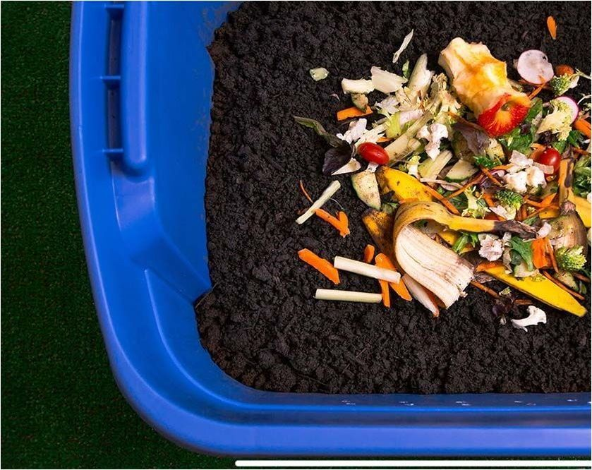 Learn how to compost and acquire tips on how to begin using scraps from your tab