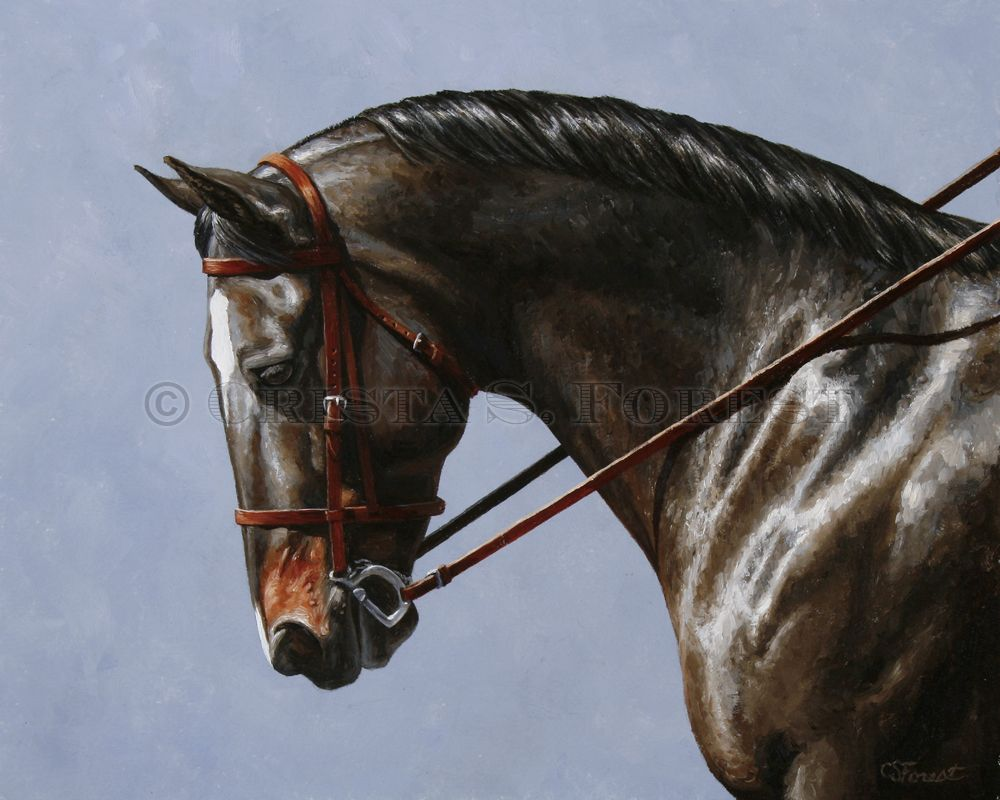 Oil painting of bay dressage horse by equine artist Crista ...