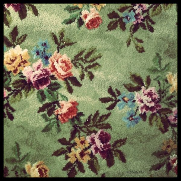 Best 25 Floral Rug Ideas On Pinterest