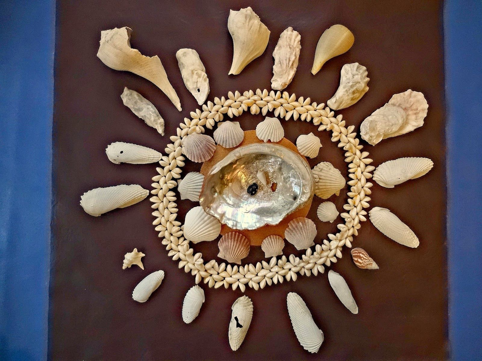 Shell Designs Inspired Montessori And Arts At Dundee Montessori Ocean Study