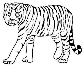 El Tigre Animales Para Imprimir Animales Salvajes Para Colorear