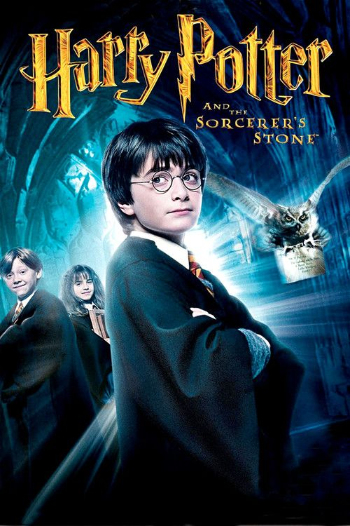 Harry Potter And The Sorcerer S Stone Harry Potter Movies Harry Potter Poster The Sorcerer S Stone