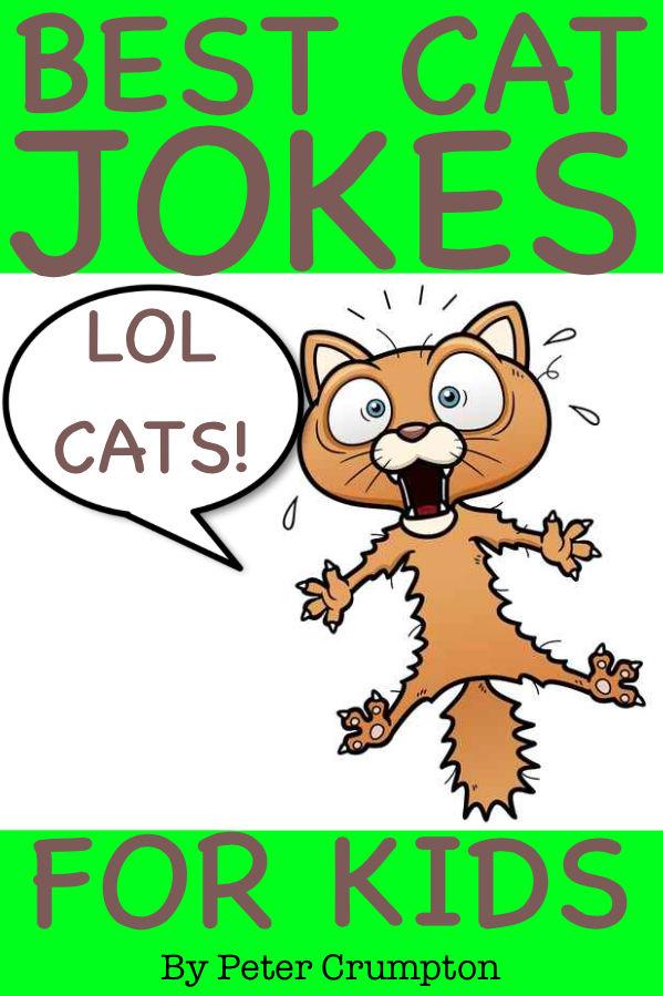 Read for free Best Lol Cat Jokes for Kids - Books Online ...