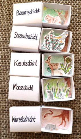 Photo of Materialtanten – Shop für Unterrichtsmaterial der Sekundarstufe