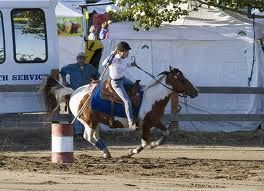 Equine Kingdom - Riding Lessons