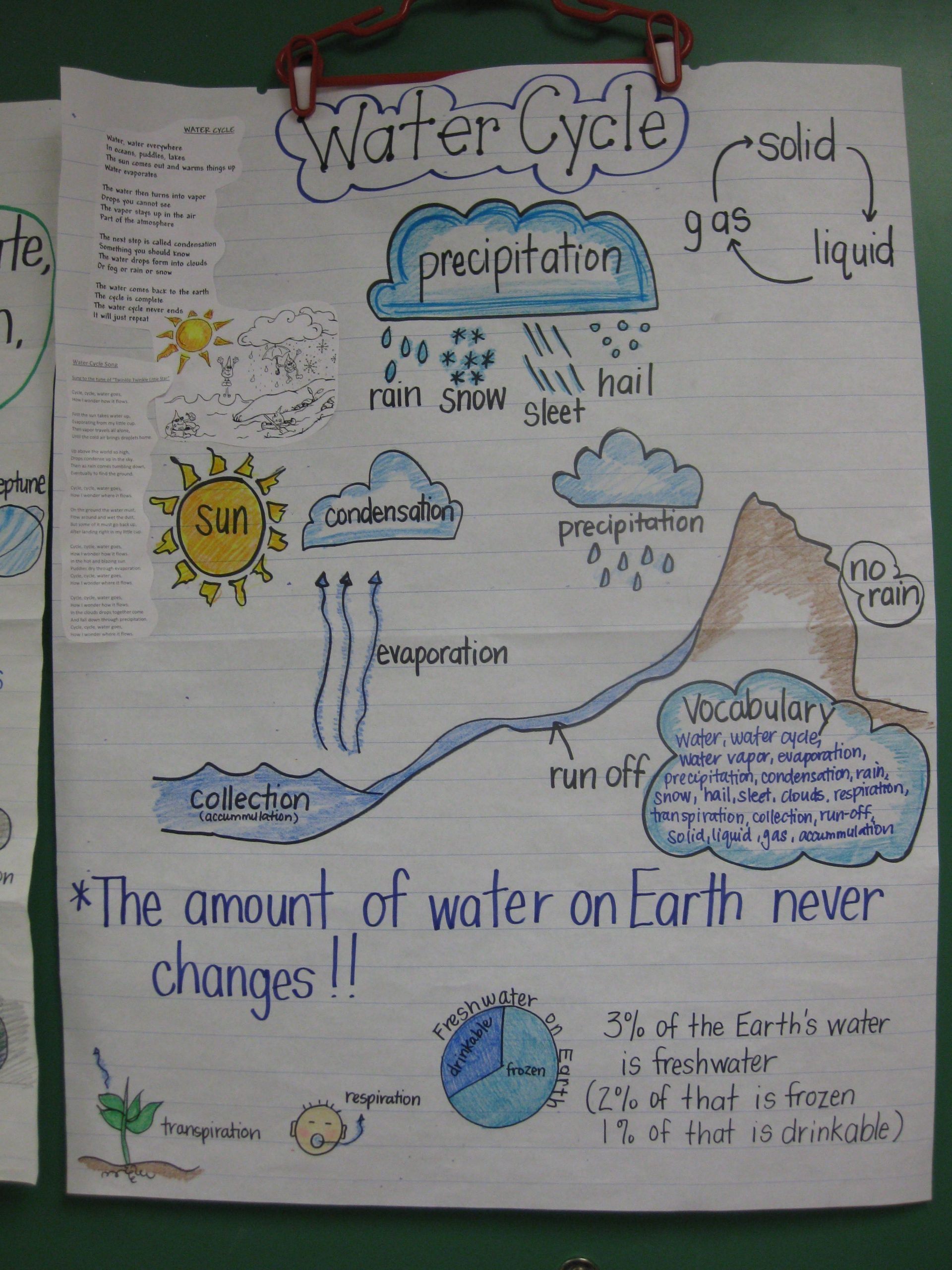 Water Cycle Worksheet Middle School Science Anchor Charts Science Chart Elementary Science