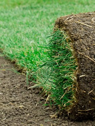 Best Landscaping In Florida Sod Cutter How To Remove Grass Removing Sod