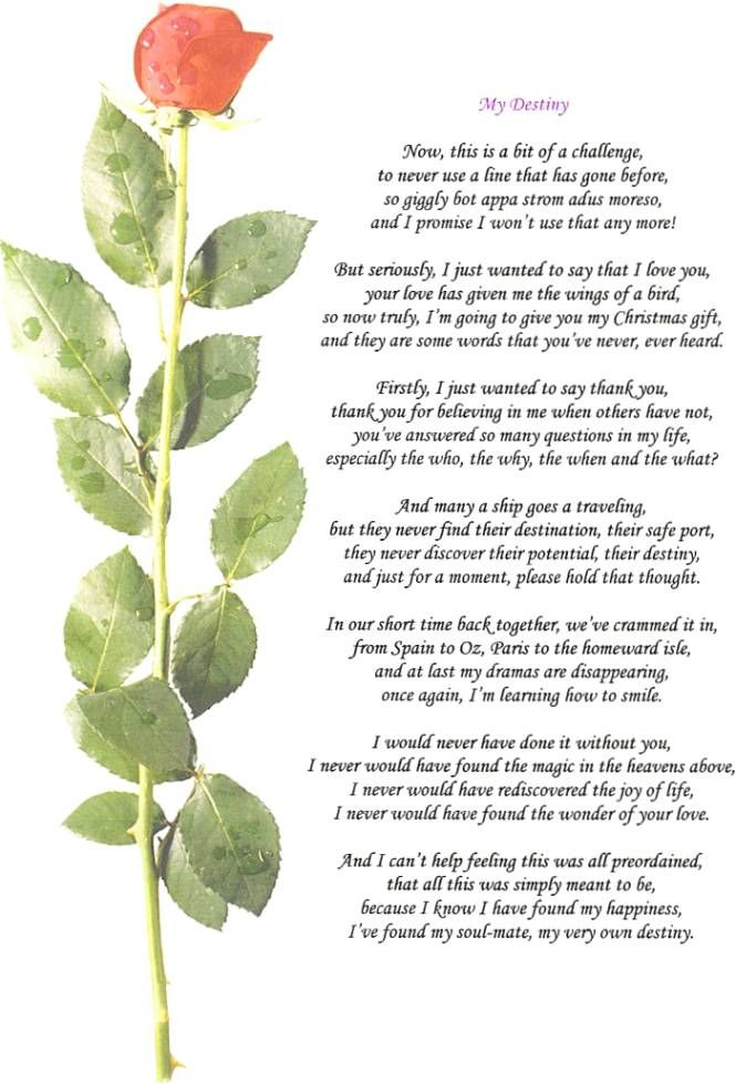 Silver Wedding Anniversary Poems