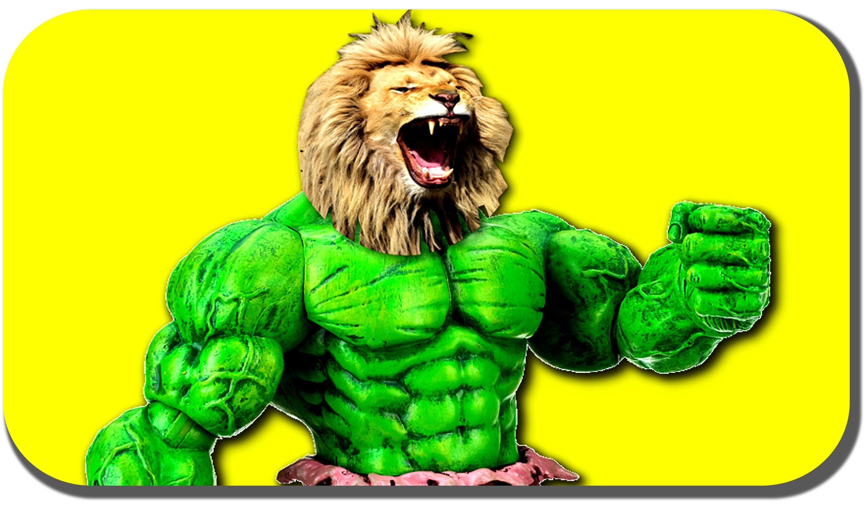 Lion Hulk Real Life Scene Finger Family Collection Nursery Rhyme   15 Mi...