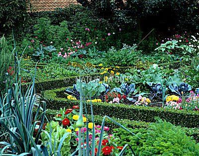 Bauerngarten, Garten, Beete, Blumen, Gemüse bauerngarten