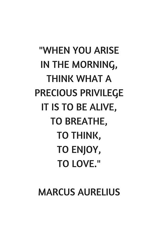 Stoic Philosophy Quote Marcus Aurelius What A Precious Privilege It Is To Be Alive Framed Print By Ideasforartists In 2021 Stoic Quotes Stoicism Quotes Alive Quotes