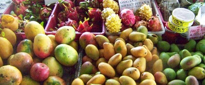 No Mangoes in Hawaii
