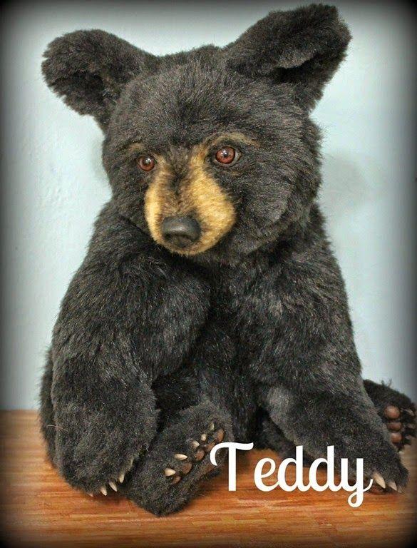 [Teddy-tag3.jpg]