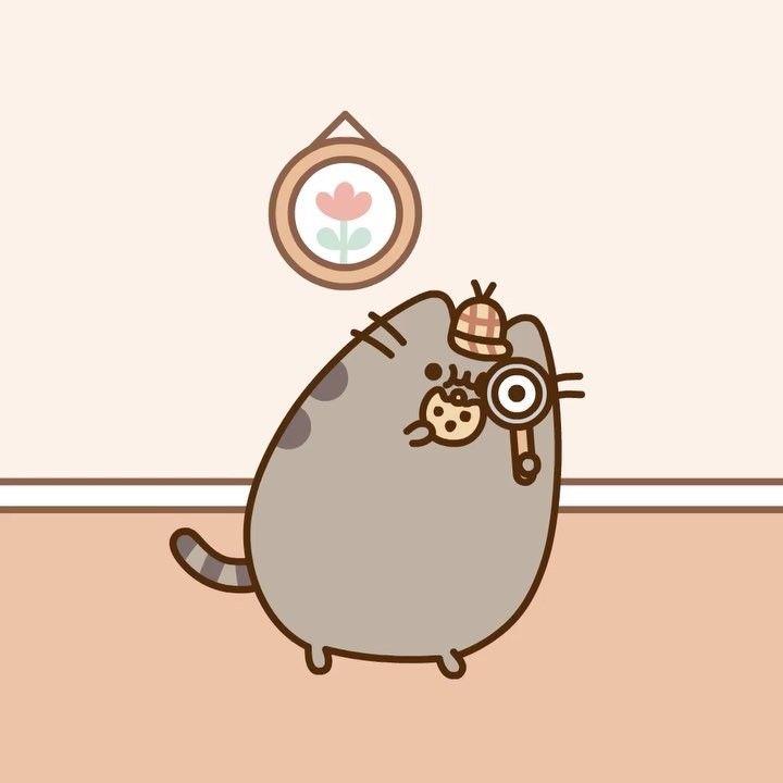 14 2 K Gilla Markeringar 179 Kommentarer Pusheen Pusheen Pa Instagram Pusheen Cute Pusheen Pusheen Cat