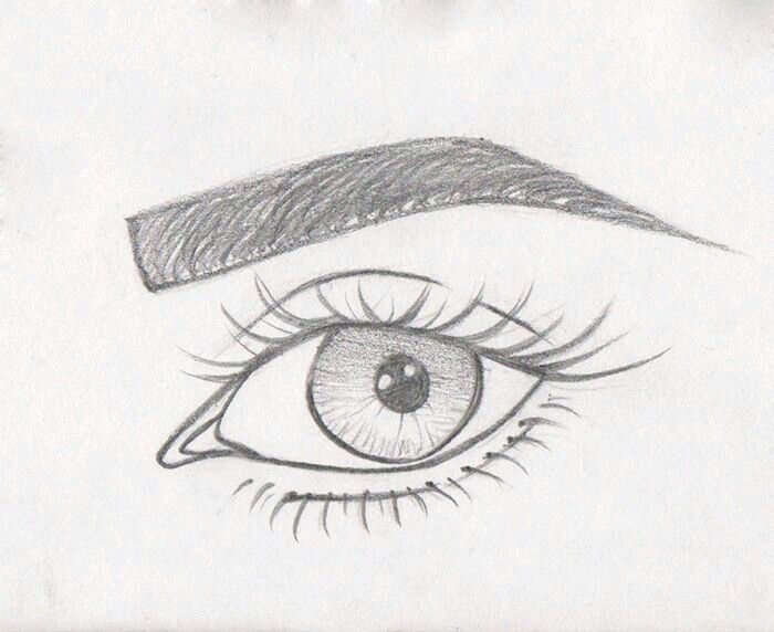 Augen mit Augenbraun Skizze