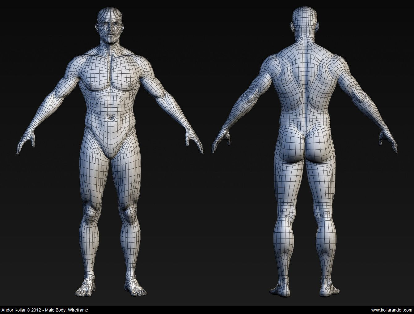 CGTalk - Body topology | 3D topology and modeling | Pinterest ...