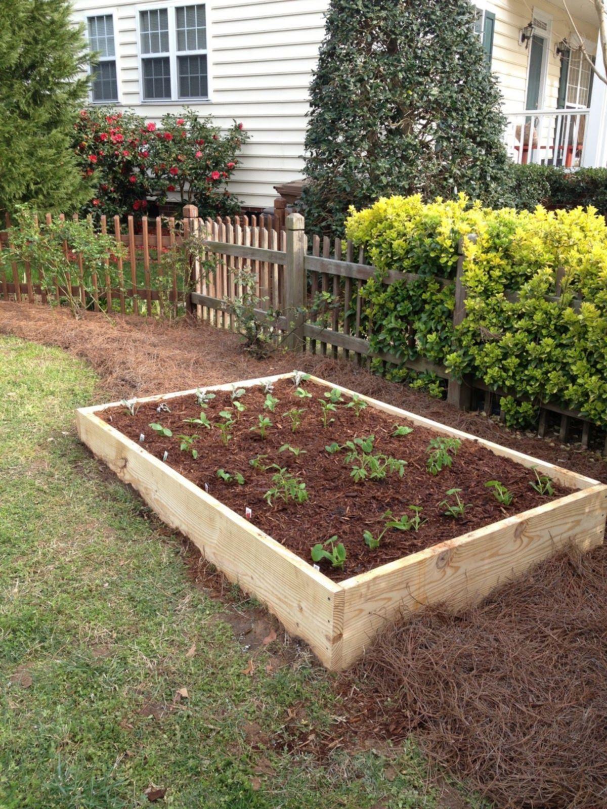 low budget diy raised bed garden design ideas design u decor