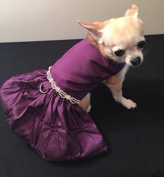 Miss Elegant Dog wedding dress dog bridesmaid dog by rufflerunway ...
