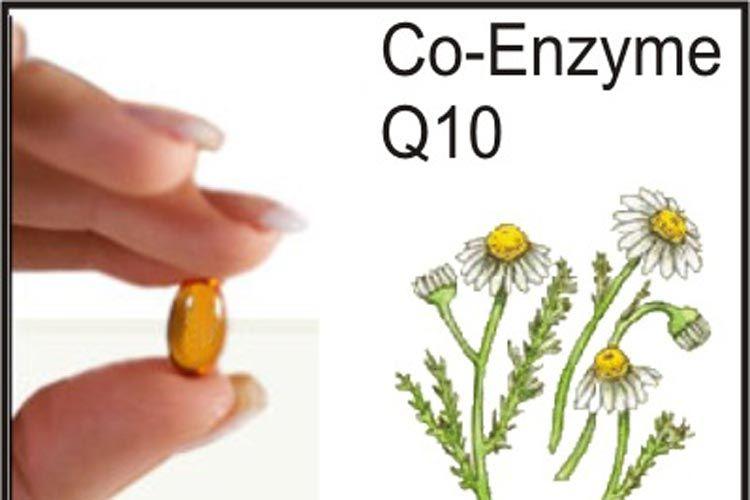 تجربة Q10 انزيم اهو فوائد كيو 10 المكمل الغذائي موسوعة Coenzyme Health And Wellbeing Health