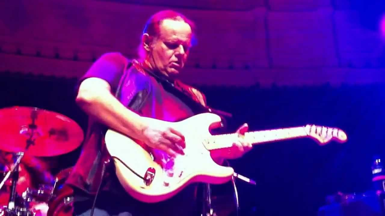 "Walter Trout - ""Say Goodbye to the Blues"""