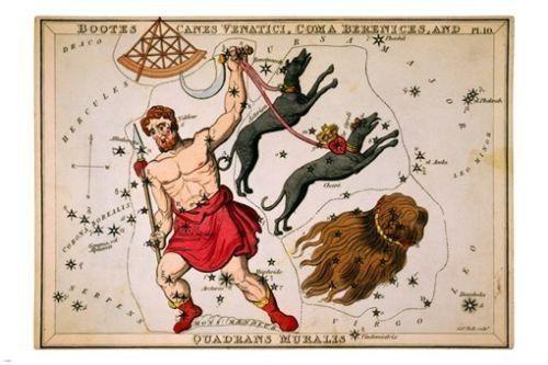 Aquila /& Antinous 1825 poster 24X36 URANIA/'S MIRROR Delphinus Sagitta