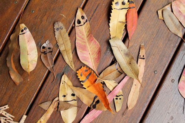 Outdoor activities for kids - Draw on leaves