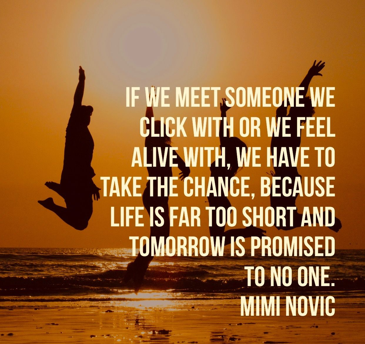 Quotes About Taking Chances And Living Life: Inspiring Quotes By Author Life Coach Mimi Novic Destiny