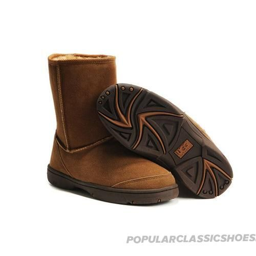 ugg ultimate short chestnut