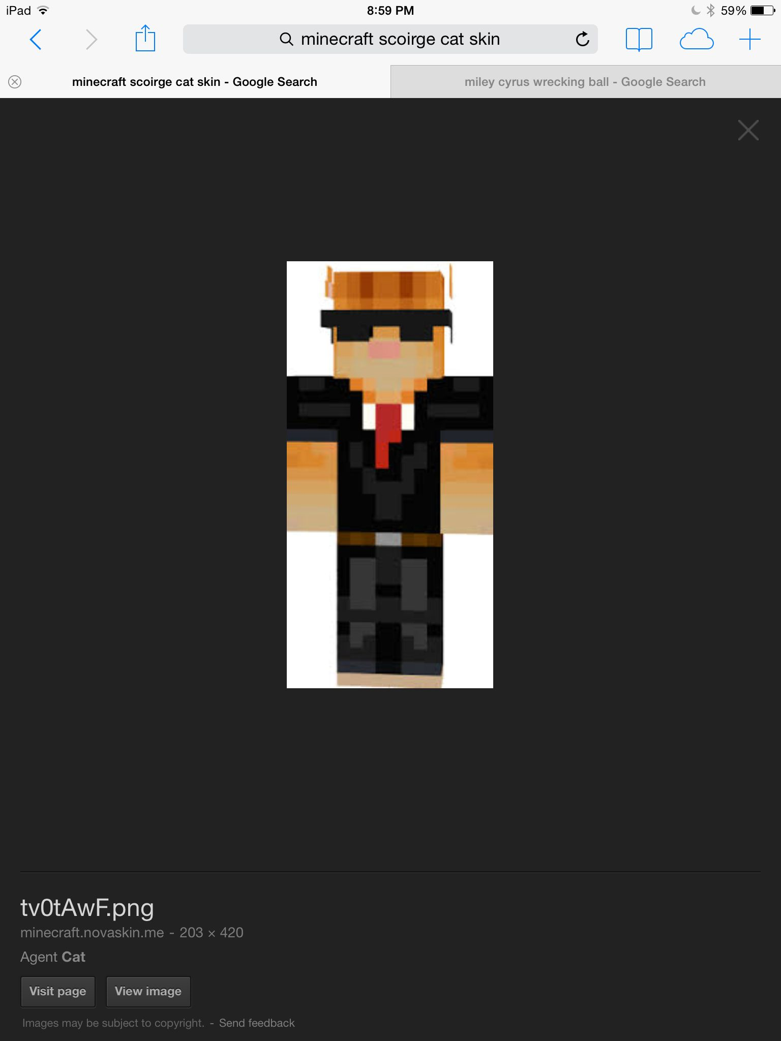 Pin by Jay X on A minecraft skins  Cat skin, Minecraft skins