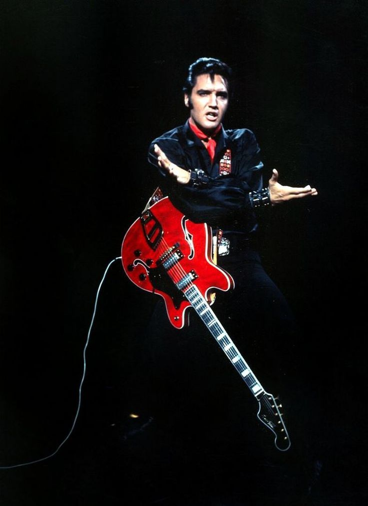 Best 25 Graceland Ideas On Pinterest Elvis Presley Elvis Presley Wallpaper Elvis Presley Elvis Presley Photos