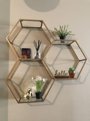 Honeycomb Shelves Plants
