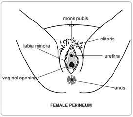 swollen-vagina-hole-black-taped-nipples