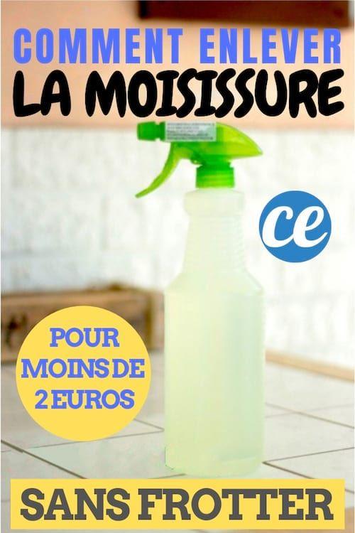 L\u0027Astuce Infaillible Pour Enlever La Moisissure Sur Les Murs SANS