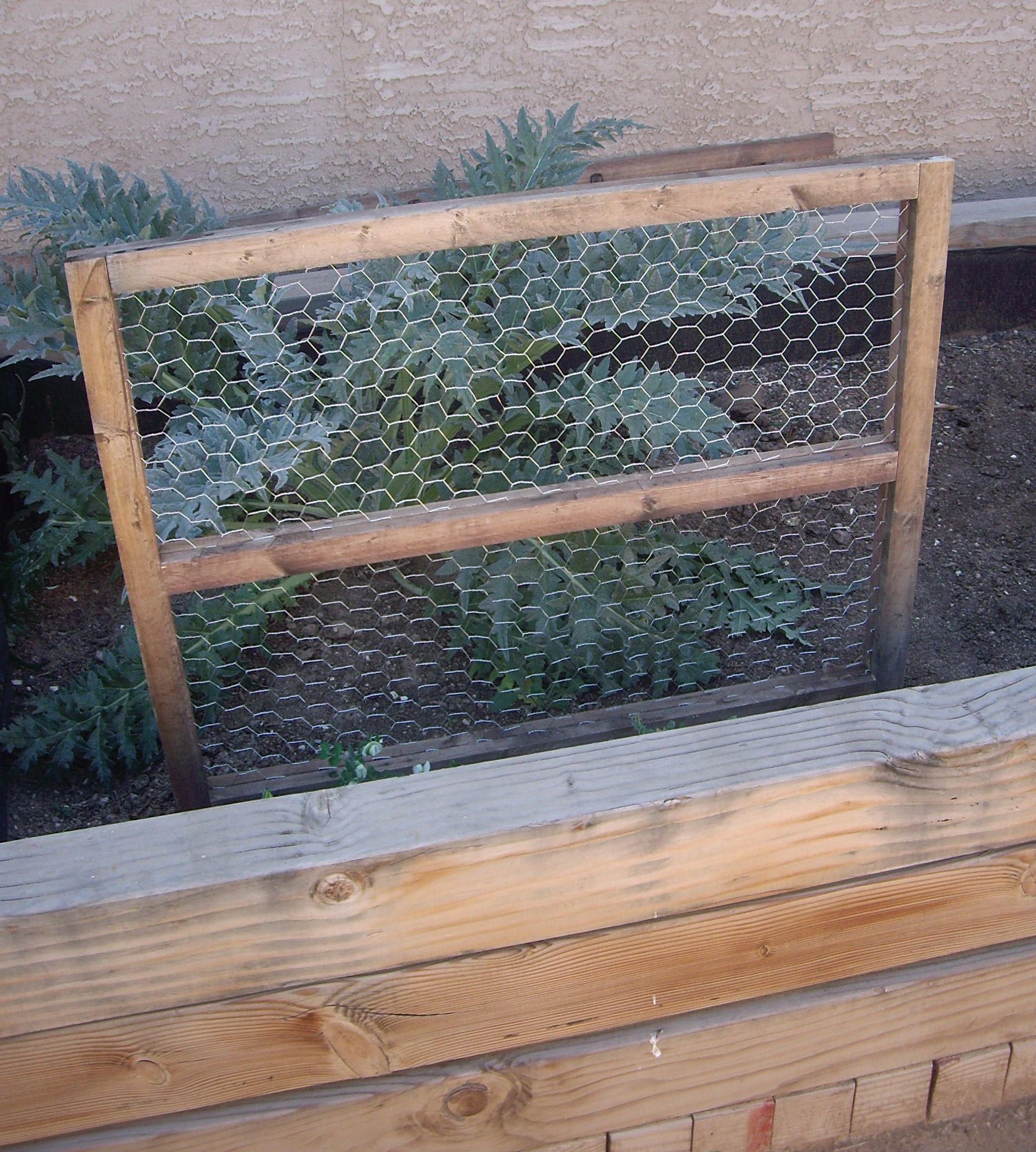 Bean Trellis W Chicken Wire Pea Trellis Diy Garden 400 x 300