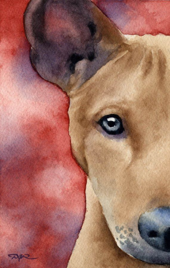 BASENJI Dog Watercolor ART PRINT Signed by Artist DJR