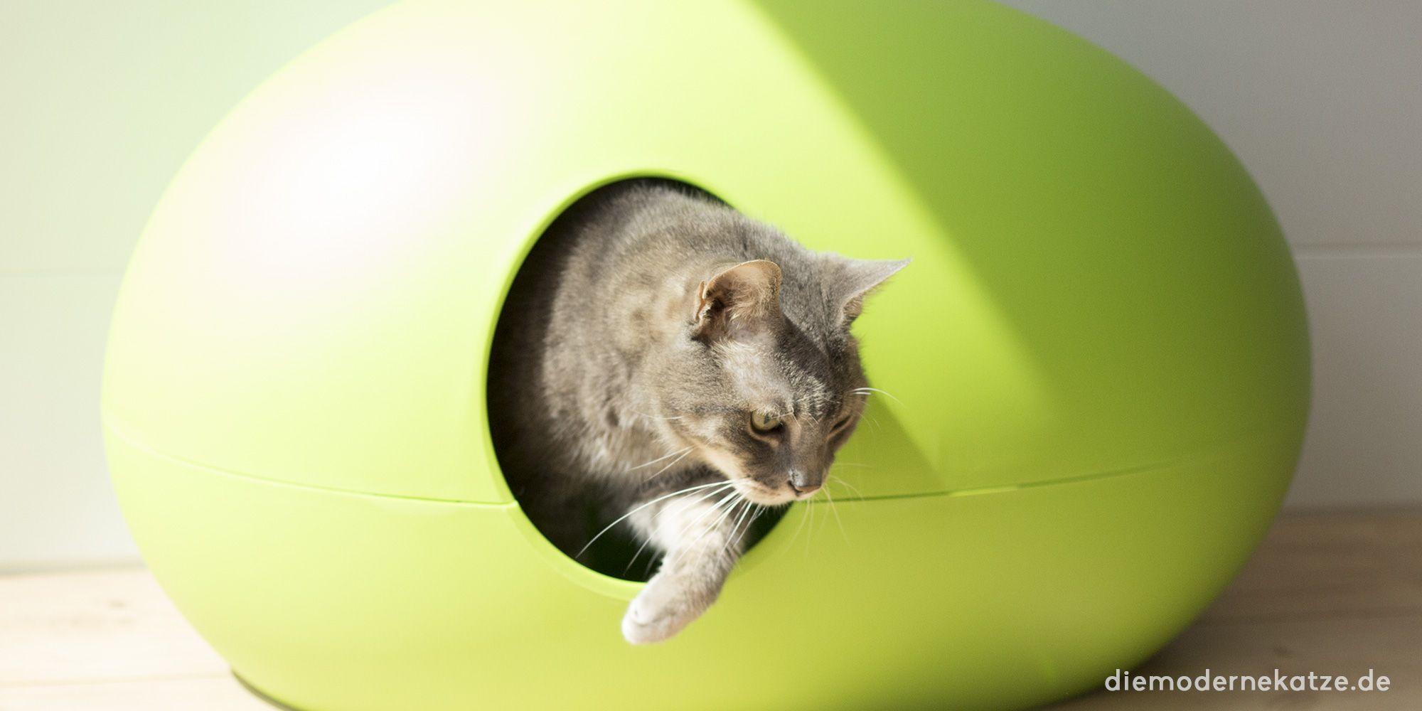 Moderne #Katzentoiletten können auch schön sein!