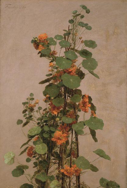 Henri Fantin- Latour les capucines, 1880 huile sur toile