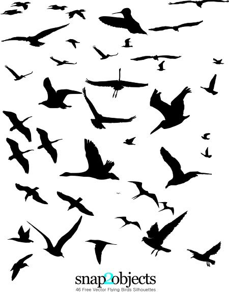 free vector flying birds