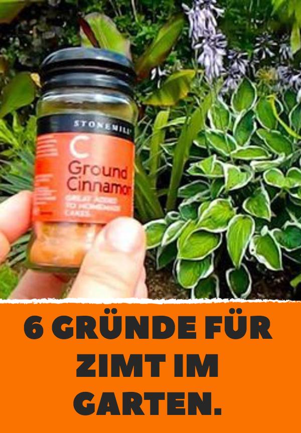 6 Gründe für Zimt im Garten. #kräutergartenpalette