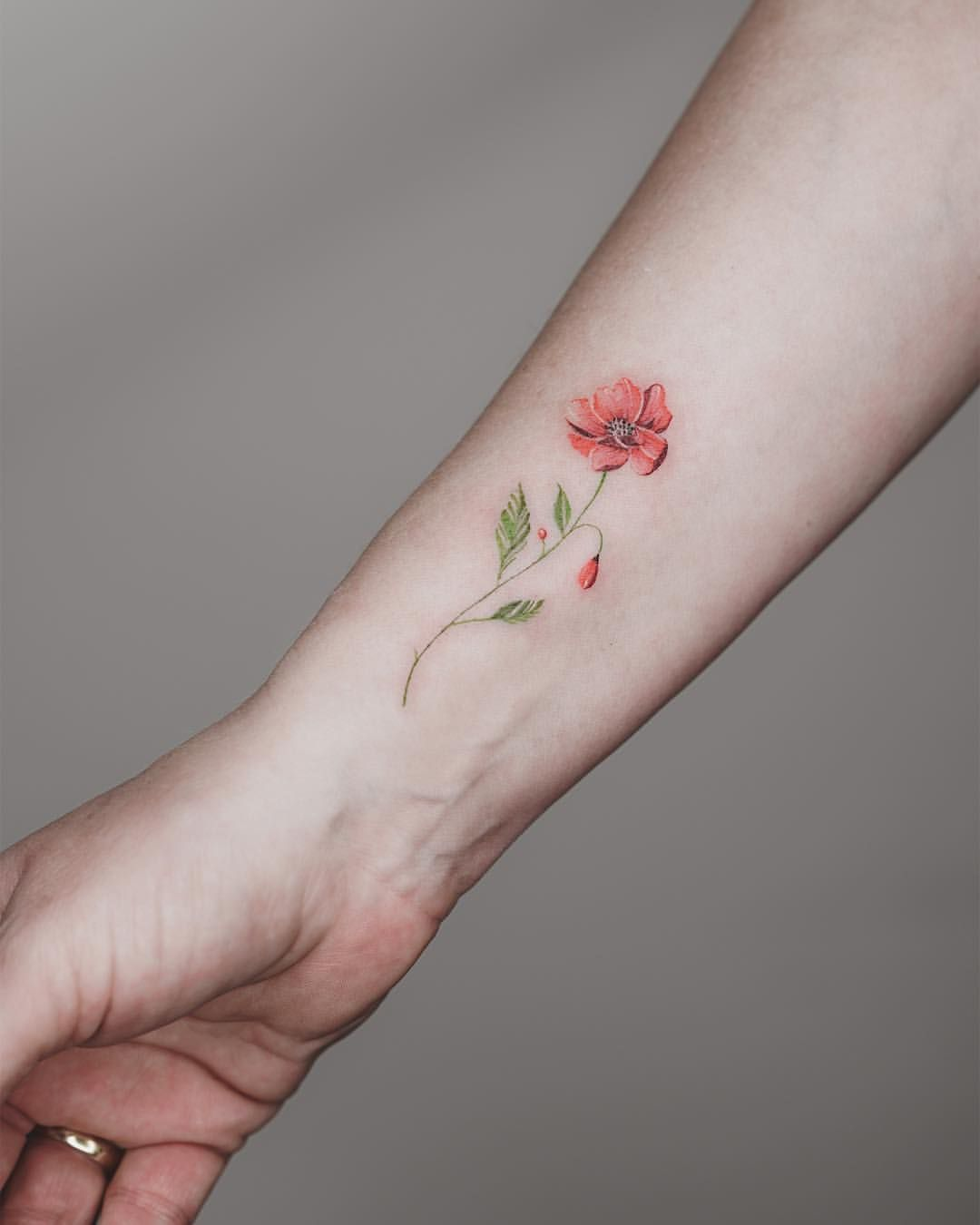 Pin By Claudia Pires On Tattoos I Admire Ideas In 2020 Poppies Tattoo Watercolor Poppy Tattoo Red Poppy Tattoo