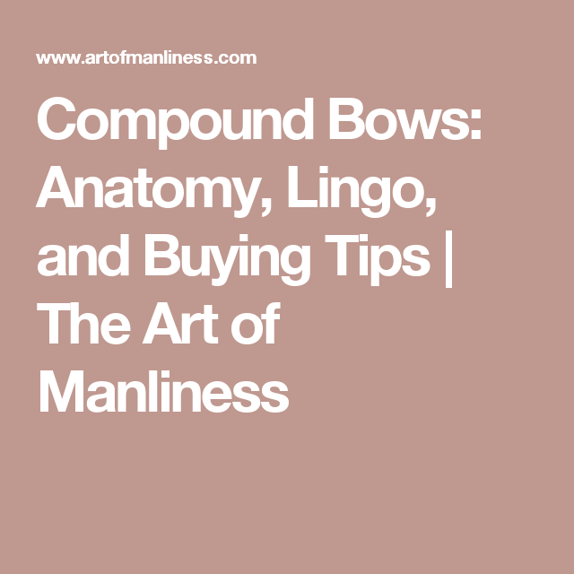 Compound Bows Anatomy Lingo And Buying Tips Compound Bows