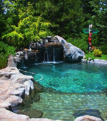 small natural design pool with evergreen landscape totem pole ...